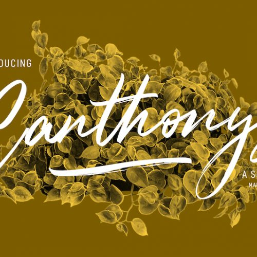 Canthonys-Preview1