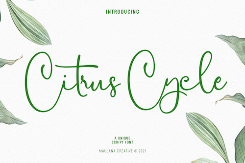 CitrusCycle-Preview1